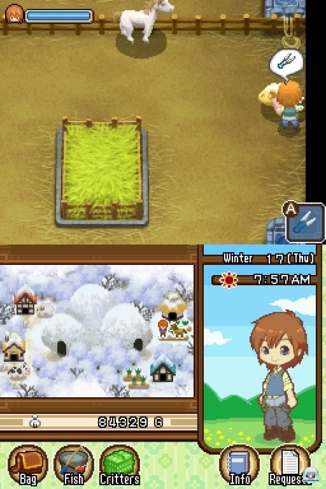 Screenshot - Harvest Moon: The Tale of Two Towns (NDS) 2231972