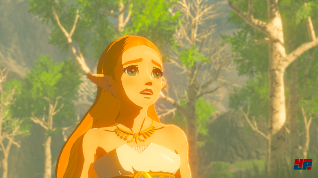 Screenshot - The Legend of Zelda: Breath of the Wild (Switch) 92538481