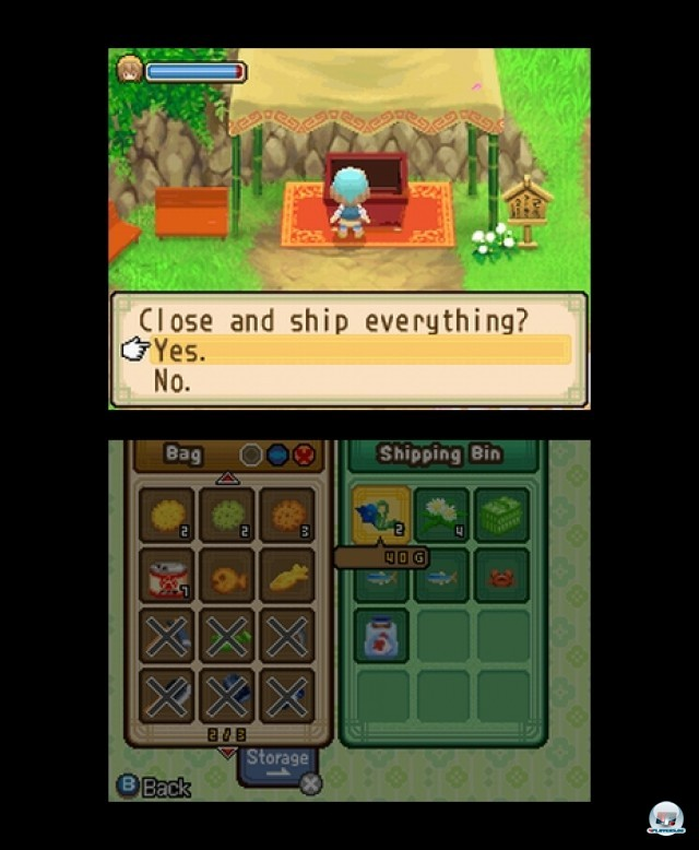Screenshot - Harvest Moon: The Tale of Two Towns (NDS) 2232073