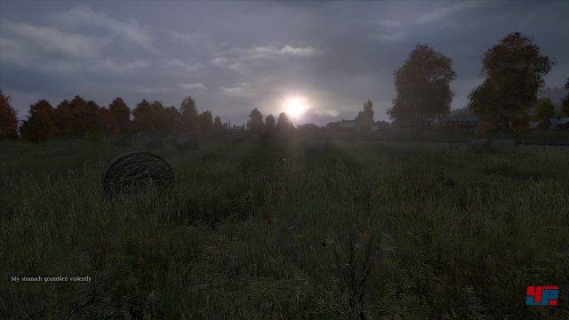 Screenshot - DayZ (PC) 92478988