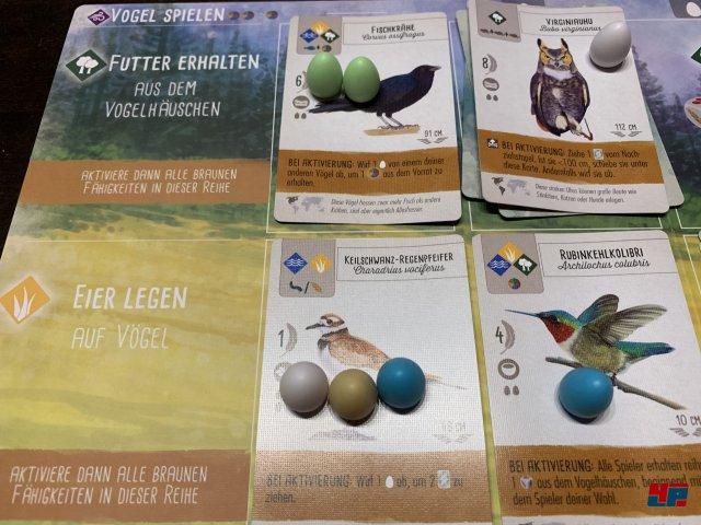 Screenshot - Flügelschlag (Spielkultur) 92588342