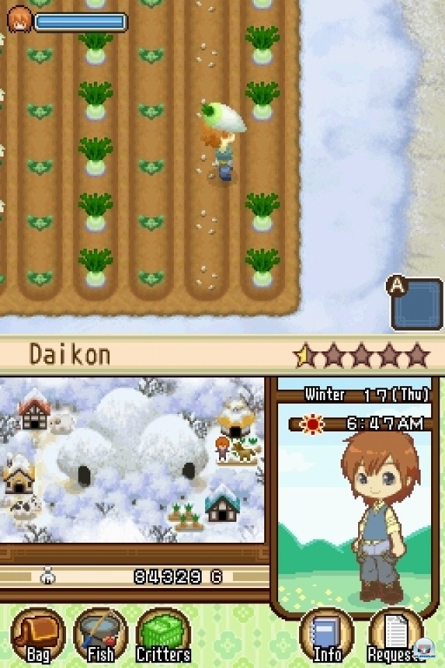 Screenshot - Harvest Moon: The Tale of Two Towns (NDS) 2231964