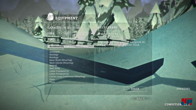 Screenshot - The Long Dark (PC) 92491318