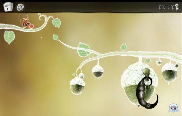 Screenshot - Botanicula (PC) 2343507