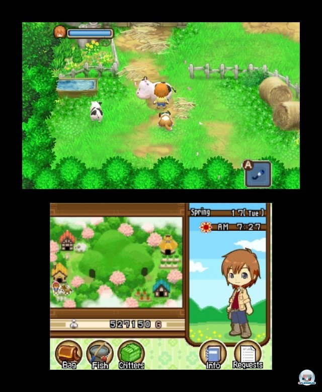 Screenshot - Harvest Moon: The Tale of Two Towns (3DS) 2232209