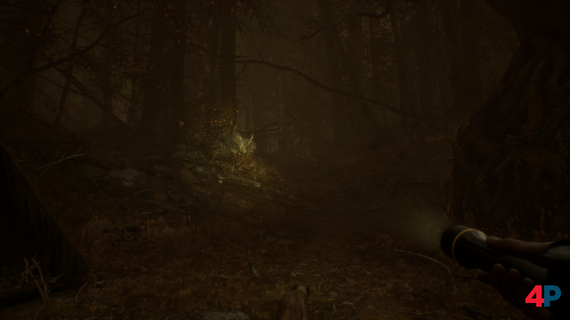 Screenshot - Blair Witch (PC)