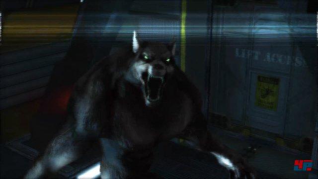 Ja. Es sind Werwölfe. In einem Raumschiff. Und sie sind hungrig.