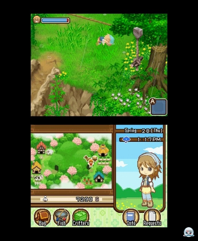 Screenshot - Harvest Moon: The Tale of Two Towns (NDS) 2232103