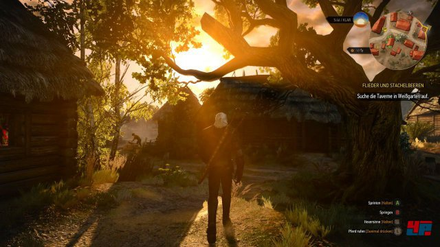 Screenshot - The Witcher 3: Wild Hunt (PC) 92504931