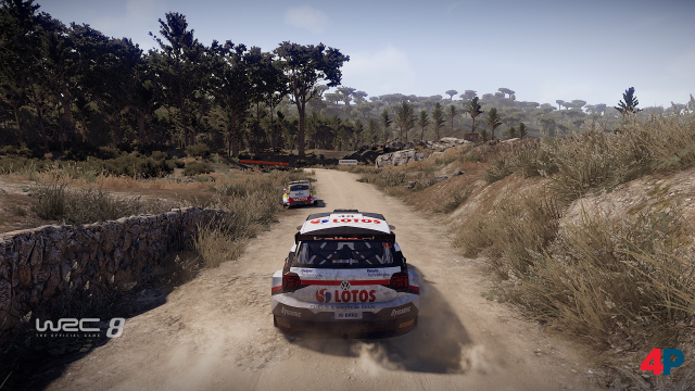 Screenshot - WRC 8 - The Official Game (PC) 92596396