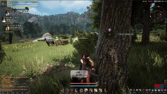 Screenshot - Black Desert (PC) 92491396
