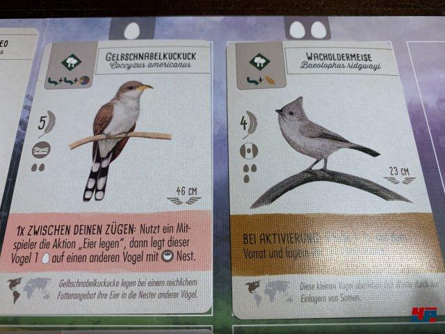 Screenshot - Flügelschlag (Spielkultur) 92588348