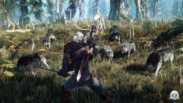 Screenshot - The Witcher 3: Wild Hunt (PC) 92464053