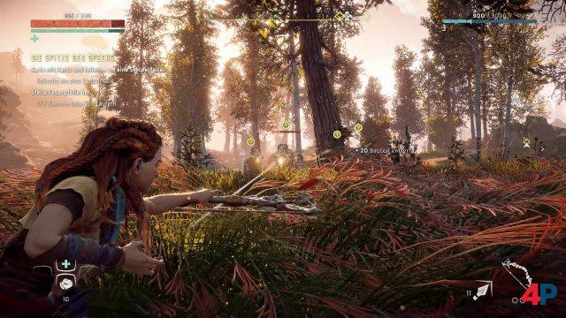 Aloy macht auch auf dem PC eine sehr gute Figur. Texturqualität, Lichteffekte und Sichtweite haben im Vergleich zur PS4-Version deutlich zugelegt.