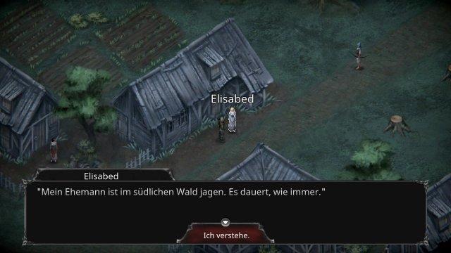 Screenshot - Vampire's Fall: Origins (Switch)