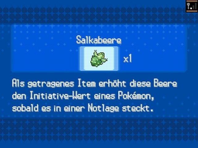 Screenshot - Pokémon Schwarz 2 (NDS) 92414942