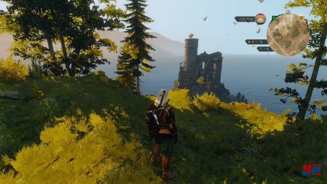 Screenshot - The Witcher 3: Wild Hunt (PlayStation4) 92504478