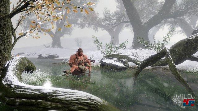 Screenshot - Wild (PlayStation4)