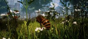 Bienen im Höhenflug?