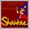 Shantae: Risky's Revenge für NDS
