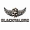 Alle Infos zu Black Talons (PC)