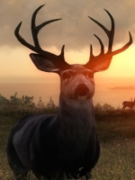 Alle Infos zu theHunter: Call of the Wild (PC,PlayStation4,XboxOne)