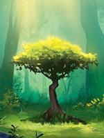 Alle Infos zu Photosynthese (Spielkultur)