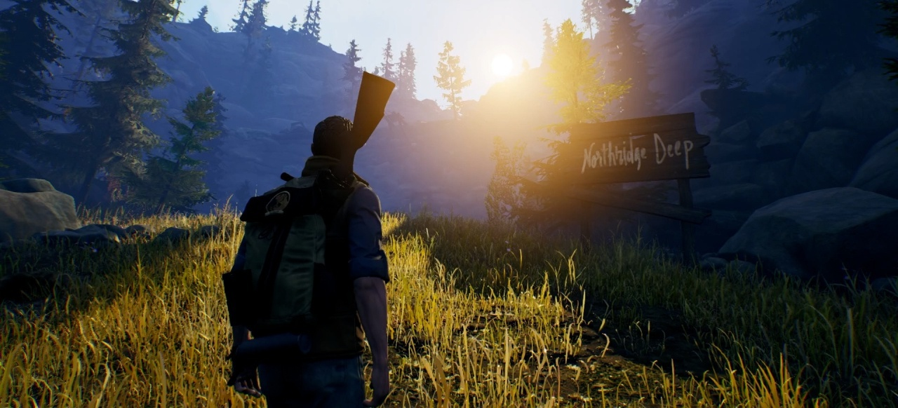 Open Country (Survival & Crafting) von 505 Games