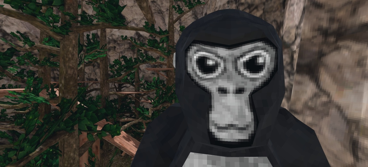 Gorilla Tag (Musik & Party) von Another Axiom