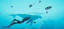 Beyond Blue: Never-Alone-Macher laden zu einem Tauchgang ins Atoll ein