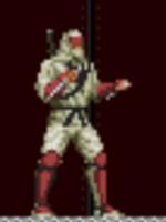Alle Infos zu The Revenge of Shinobi (Android,iPad,iPhone)