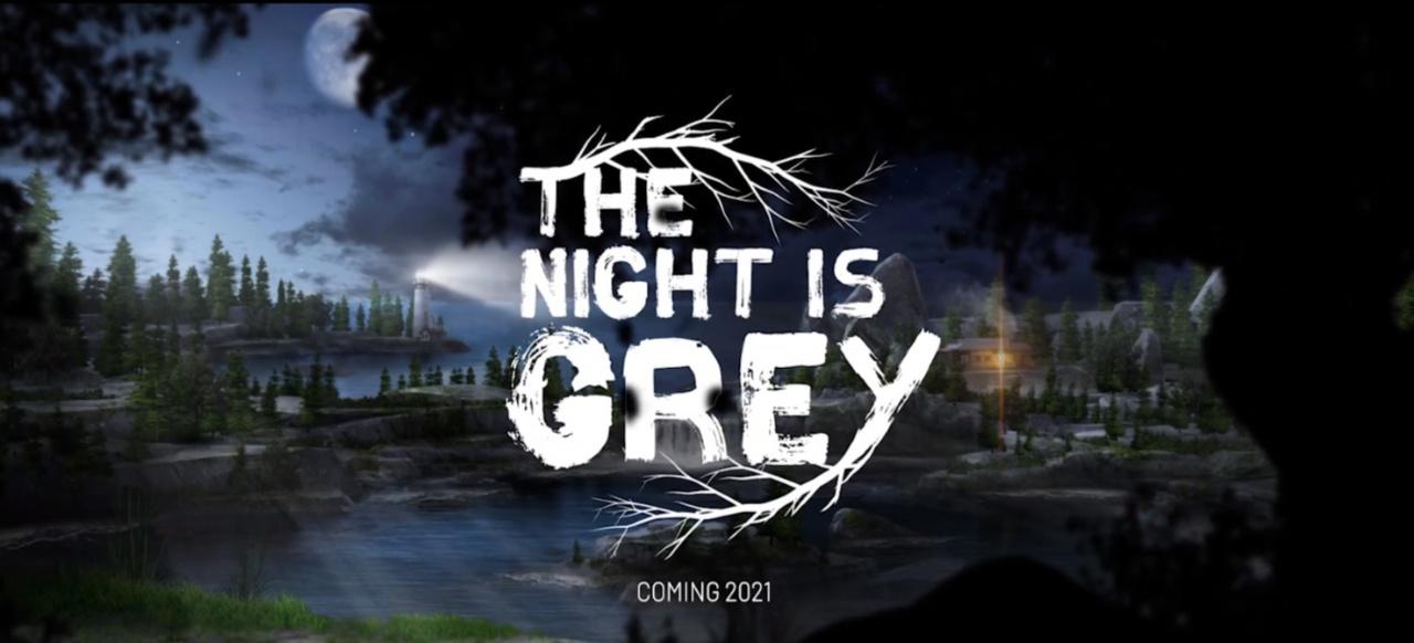 The Night is Grey (Adventure) von Whalestork Interactive