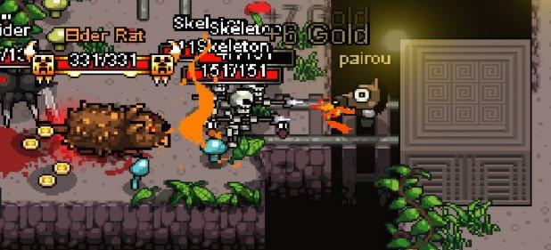Hero Siege (Arcade-Action) von Panic Art Studios