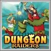 Alle Infos zu Dungeon Raiders (NDS)