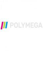 Alle Infos zu Polymega (Spielkultur)