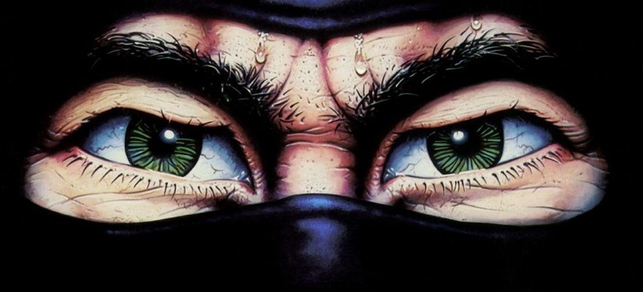 The Last Ninja (Action-Adventure) von Activision