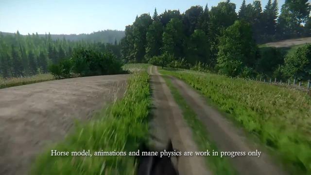 Video Update #3: Horses