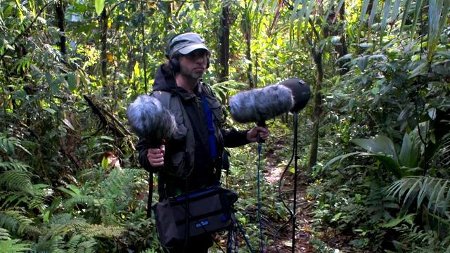 Avalanche Studios in the Jungle