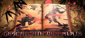 Ninja zwischen Mythos und Wirklichkeit